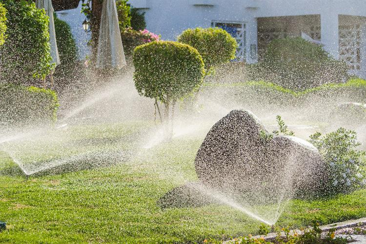 main of Automating Your Sprinkler System Makes it Easy (autoproducts)